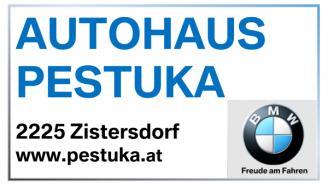 Autohaus Pestuka Logo